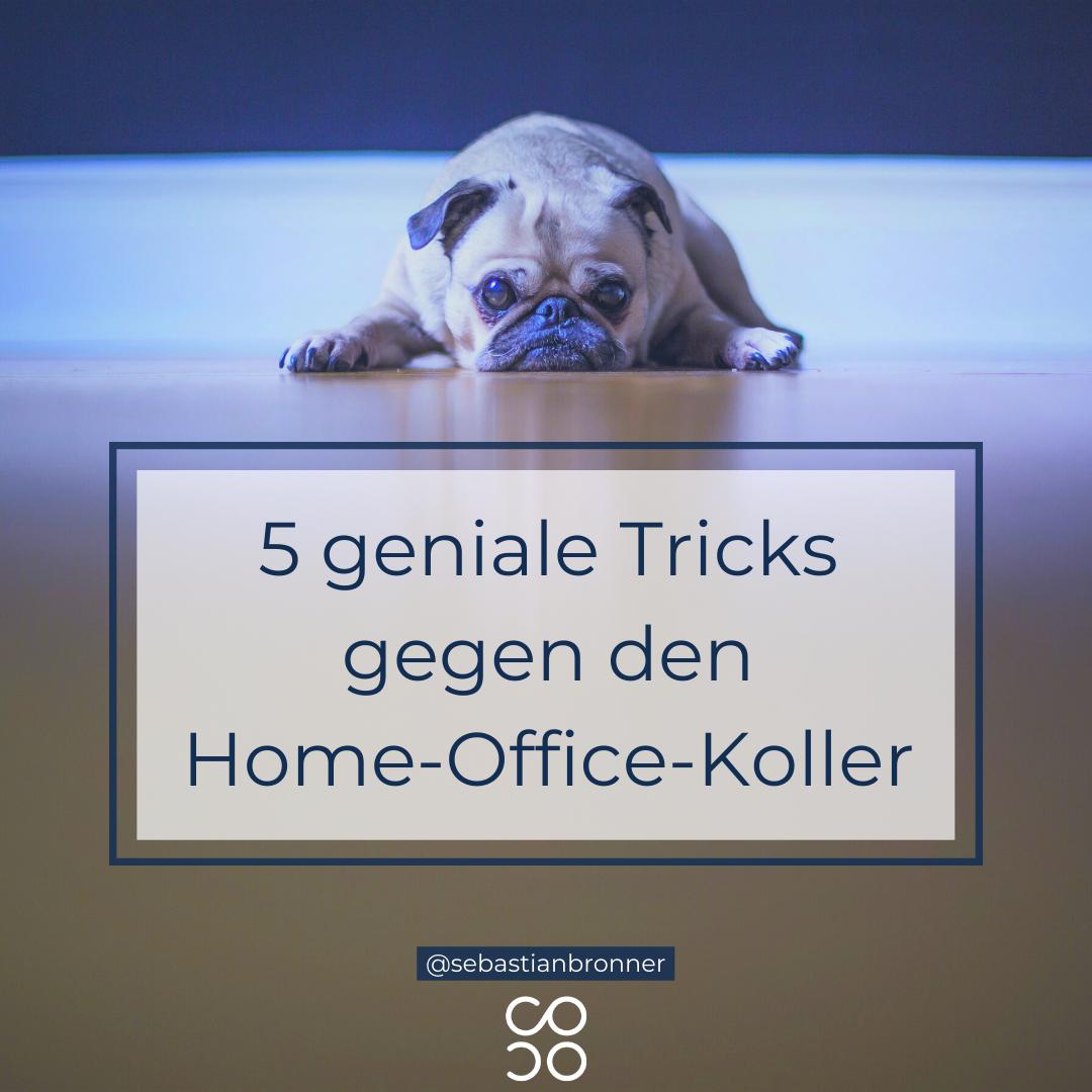 Home-Office-Koller